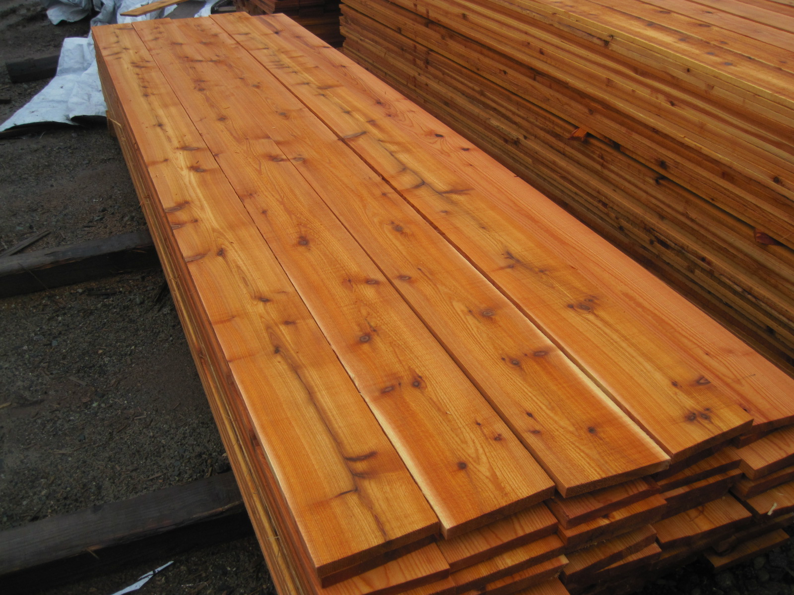 Western red cedar tongue and groove flooring alyssamyers for Cedar flooring